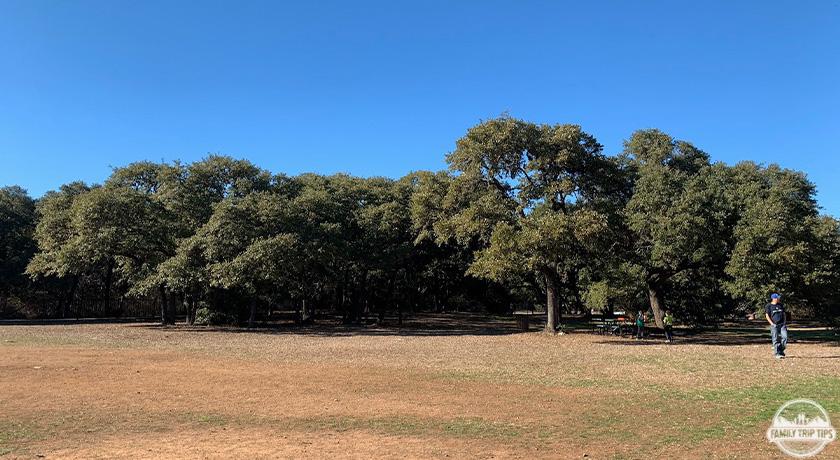 dick-nichols-park-field